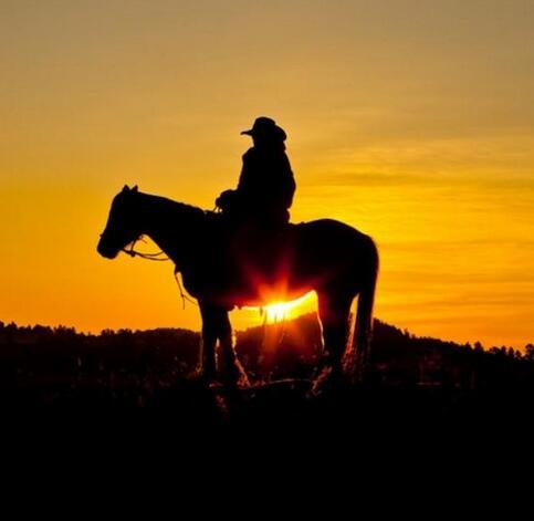 海子:今生以梦为马,来