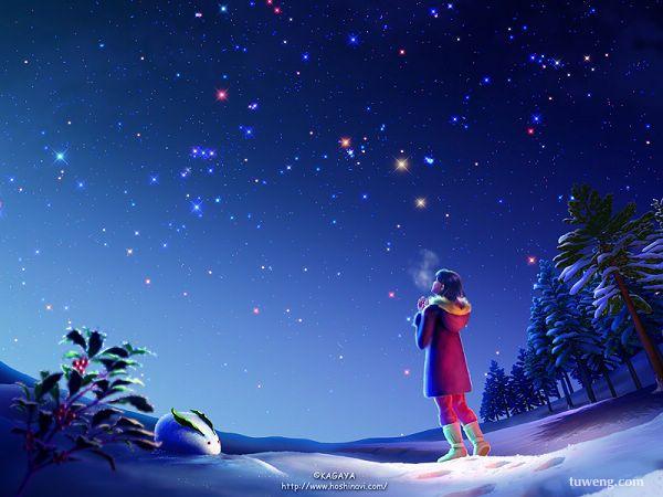 今夜,让我静静的想你(组图) - 我的读书小屋 - 我的读书小屋