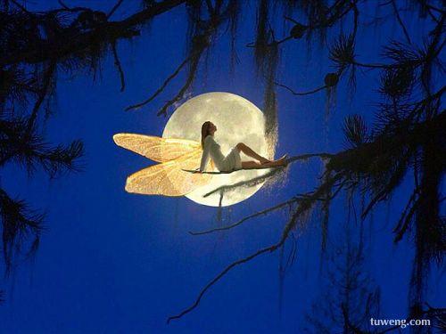 月离我很近 - - . - .