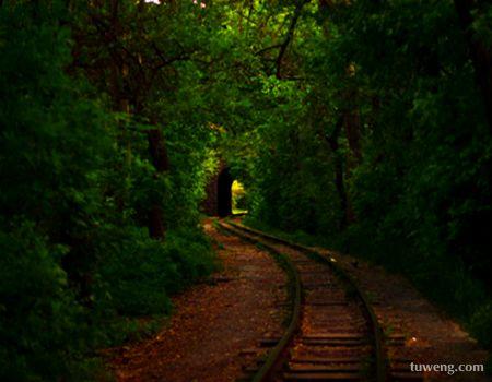 安静的小路