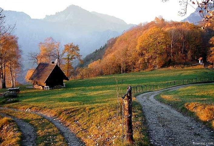 走在 乡间的小路 上-乡间小路吉他谱 乡间的小路