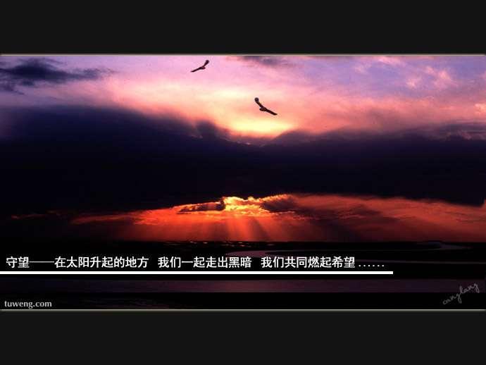 守望 - AAA级私秘视频馆 - jb.cb.cb.cb 的博客