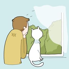 感谢猫咪教会我的那些