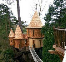 树上的小屋