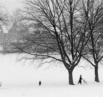 大雪覆盖的记忆