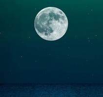 永夜月同孤