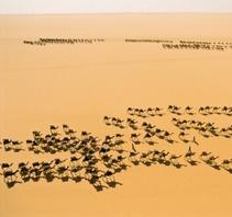 George Steinmetz沙漠