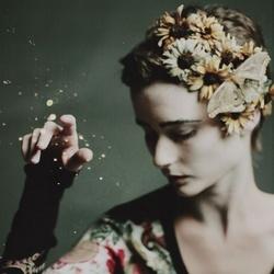 Light flower :photo