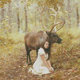 林中精灵 唯美梦幻的森