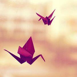 送你一只千纸鹤