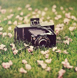 相机的记忆